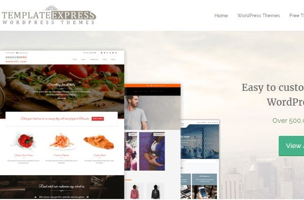 template express premium wordpress themes provider