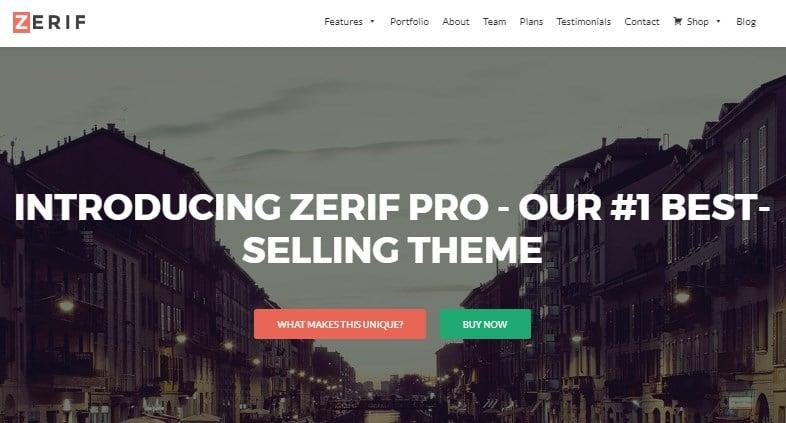 Zerif Lite Pro theme