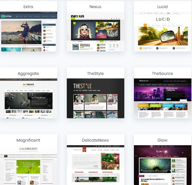 Elegant Themes  Available For Purchase