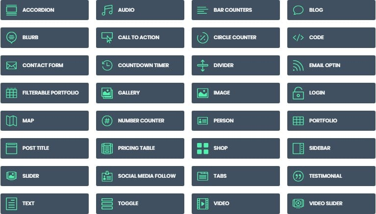 divi builder options