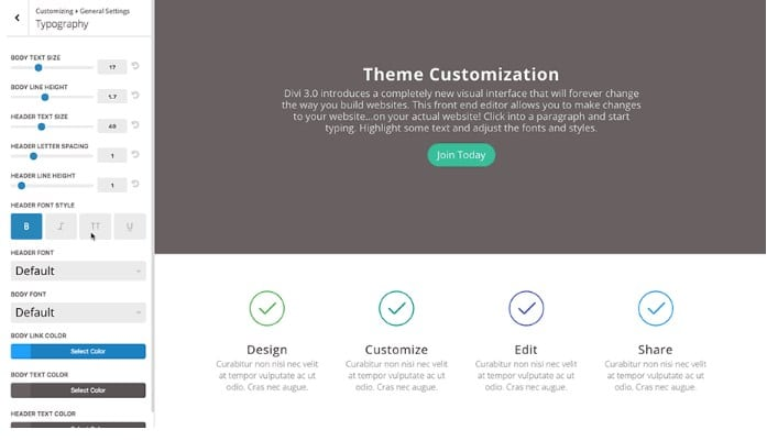 Divi Customization