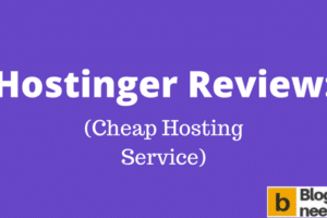 Hostinger Review to explain Hostinger service