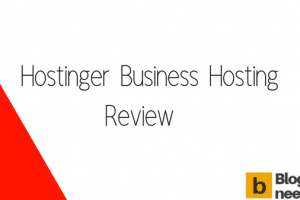 Hostinger Business Hosting Review 2018 from Bloggersneed.com