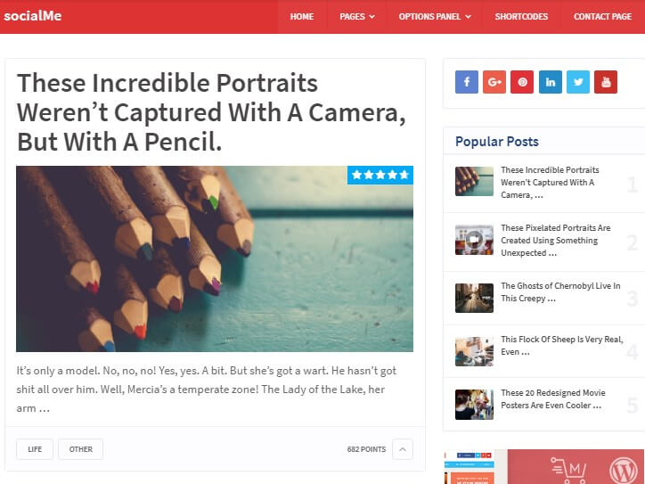 Social Me WordPress Theme Demo