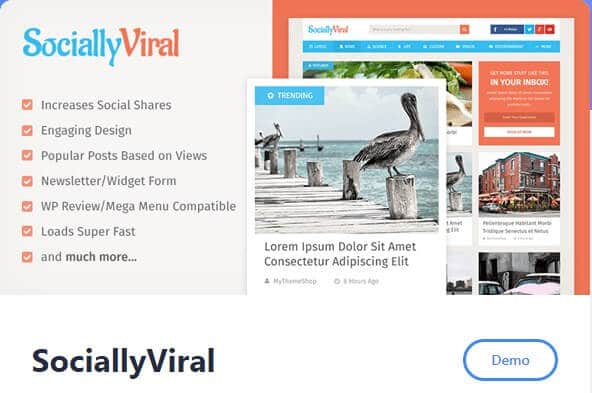 Top WordPress theme_Viral