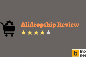 Alidropship Review