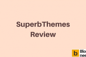 SuperbThemes review