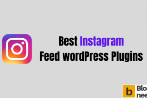 Best Instagram Feed WordPress Plugins