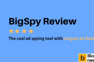 BigSpy Review